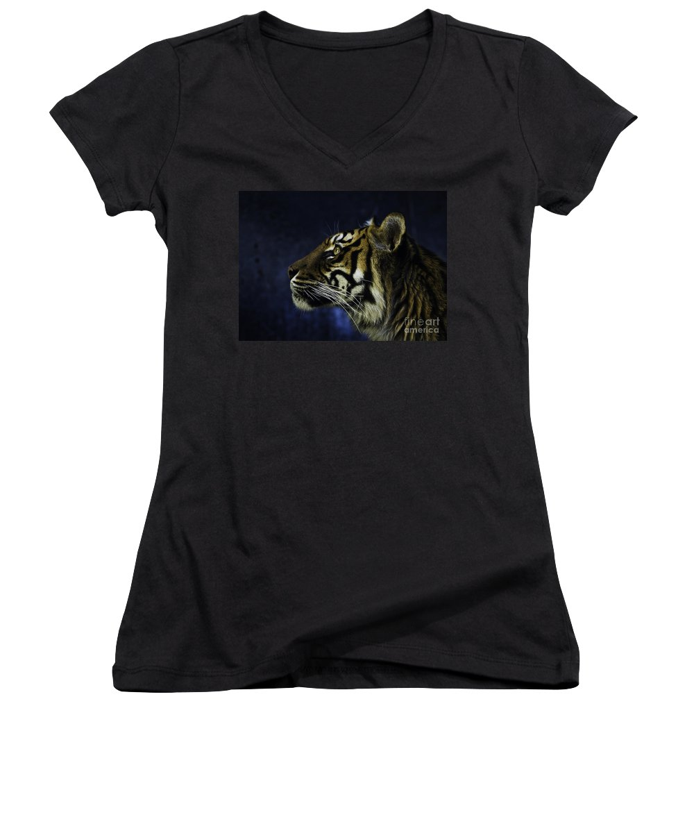 Sumatran Tiger Women's V-Neck T-Shirt featuring the photograph Sumatran Tiger Profile by Avalon Fine Art Photography