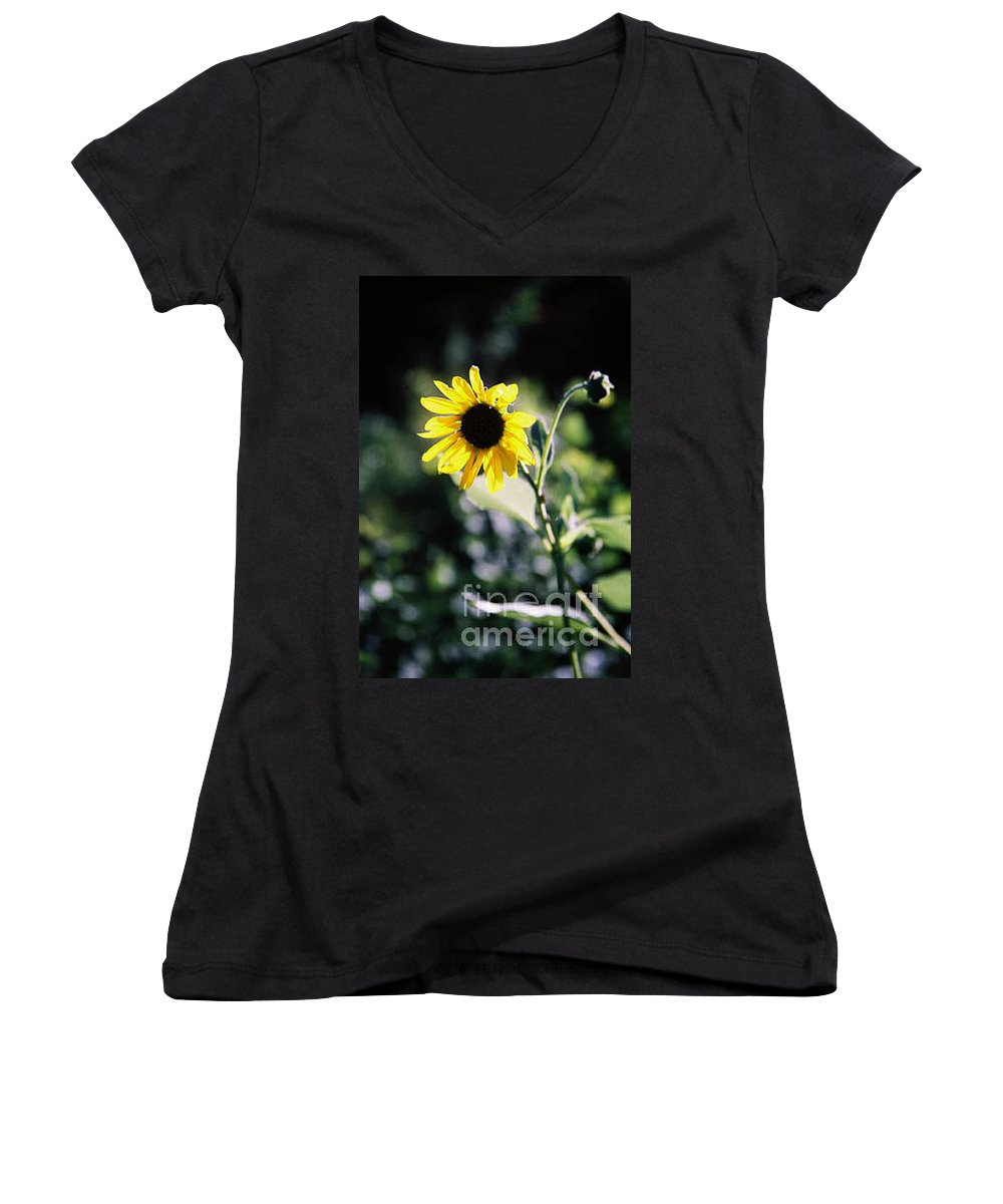 Sunflower Women's V-Neck T-Shirt featuring the photograph Summer Sunshine by Kathy McClure