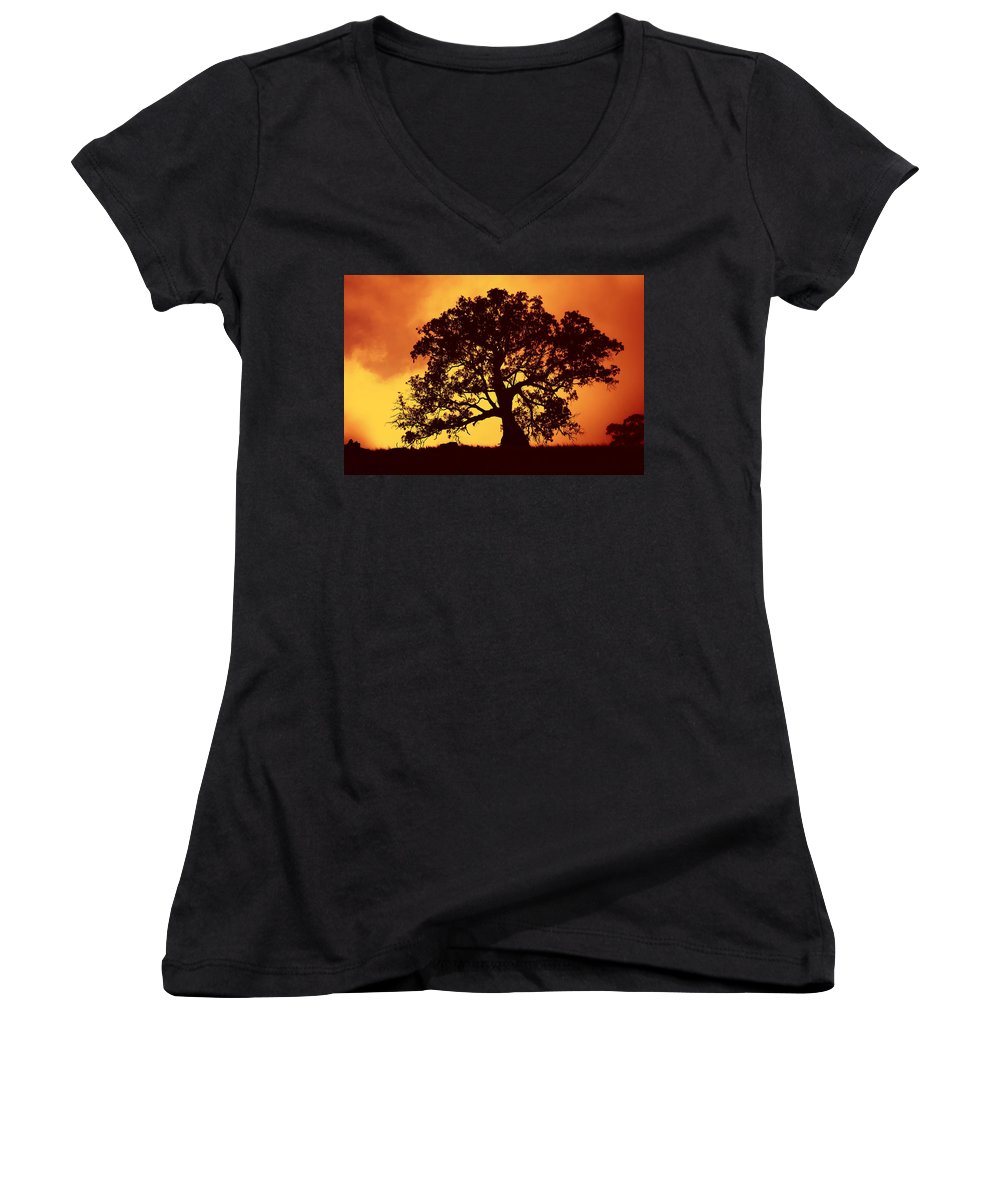Gum Tree Women's V-Neck T-Shirt featuring the photograph Sunrise Gum by Mike Dawson