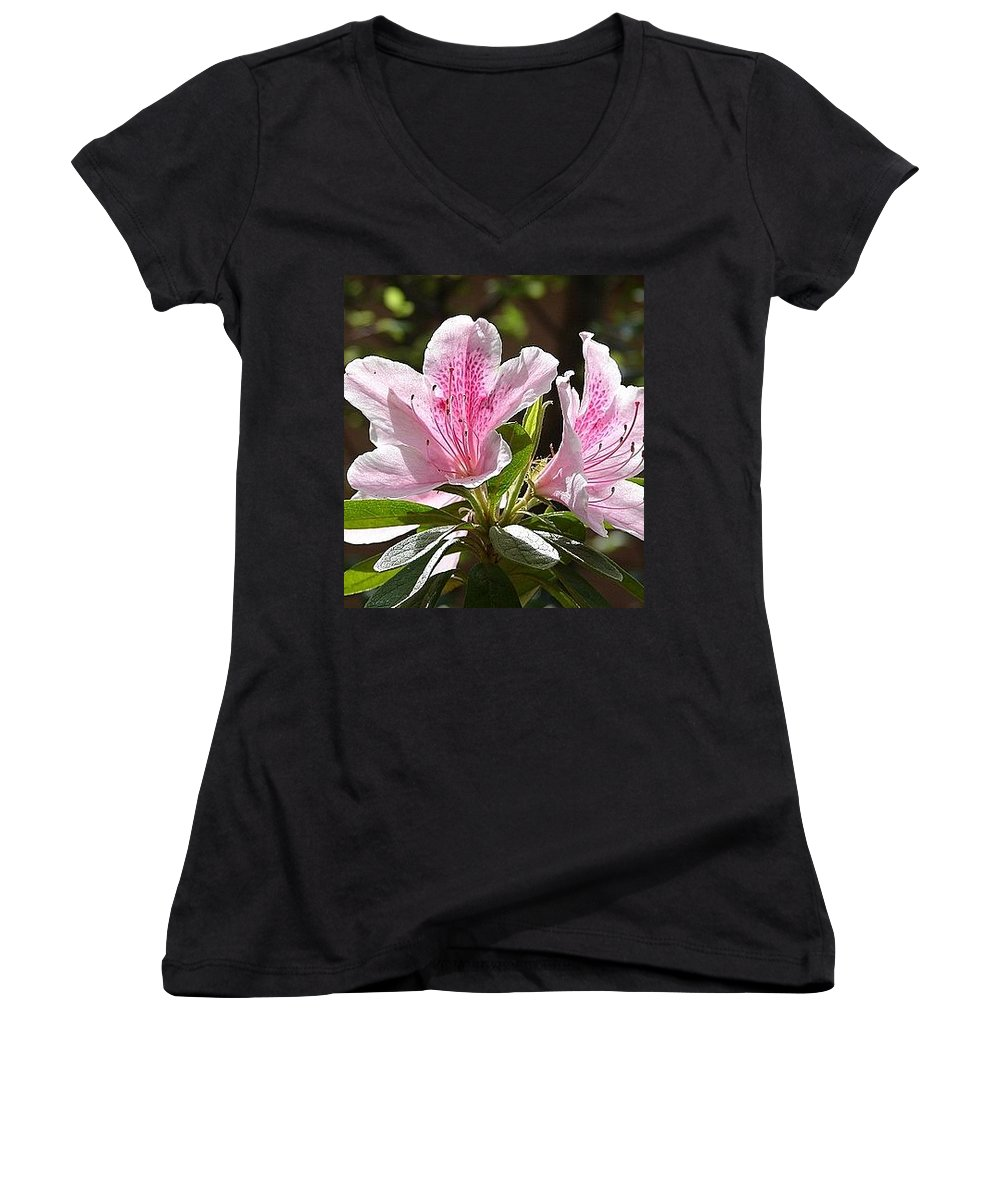 Lily Pinkgreen Pedals Leaves Women's V-Neck (Athletic Fit) featuring the photograph Sunshine by Luciana Seymour