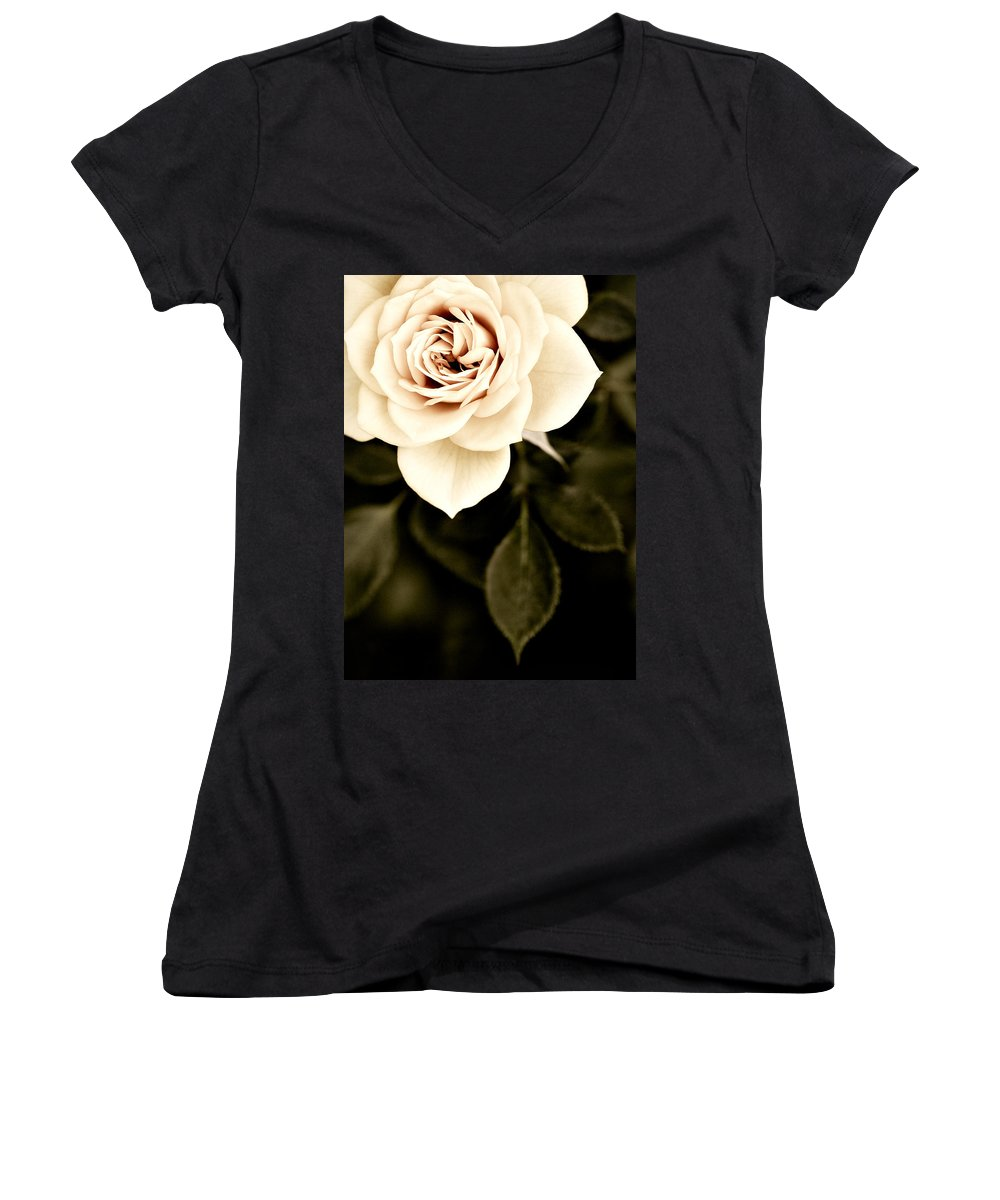 Rose Women's V-Neck T-Shirt featuring the photograph The Softest Rose by Marilyn Hunt