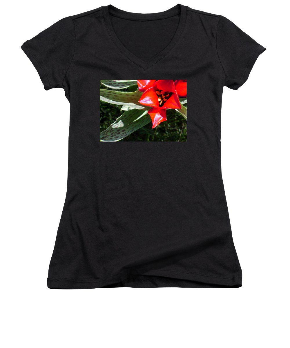 Tulip Women's V-Neck (Athletic Fit) featuring the photograph Tulip by Steve Karol