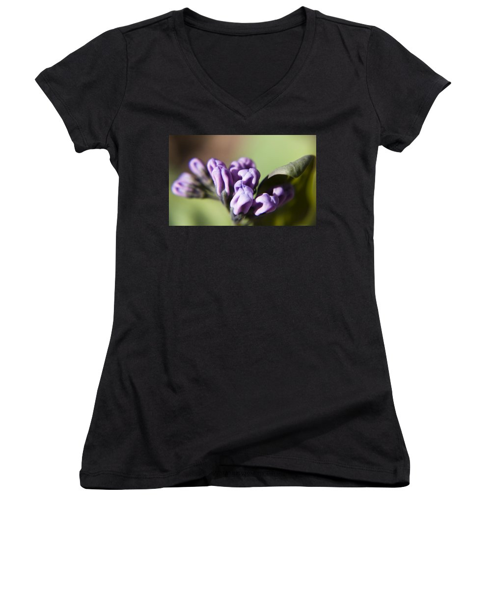 Virginia Women's V-Neck T-Shirt featuring the photograph Virginia Bluebell Buds by Teresa Mucha