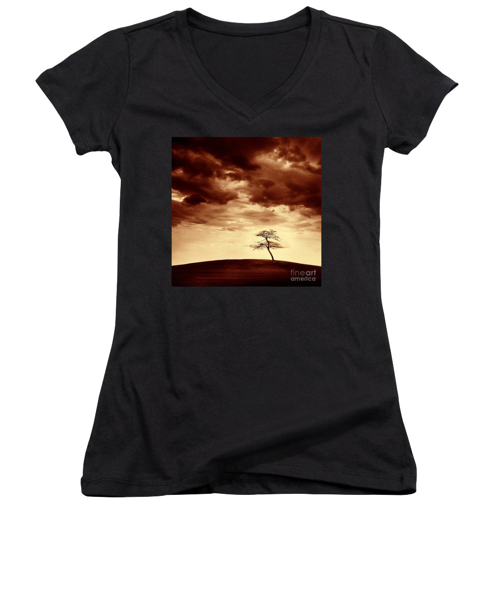 Tree Women's V-Neck (Athletic Fit) featuring the photograph What Will Be The Legacy by Dana DiPasquale