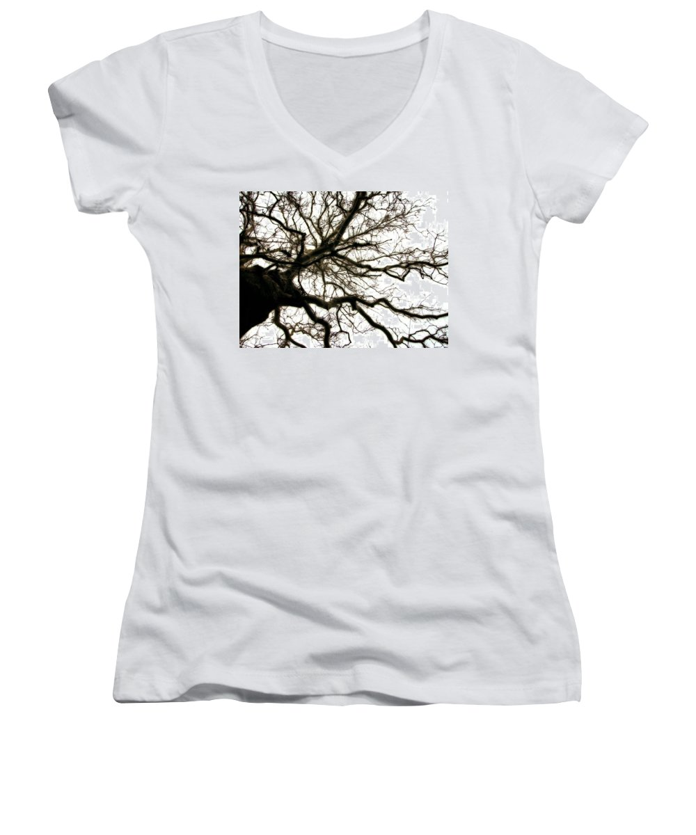 Branches Women's V-Neck T-Shirt featuring the photograph Branches by Michelle Calkins