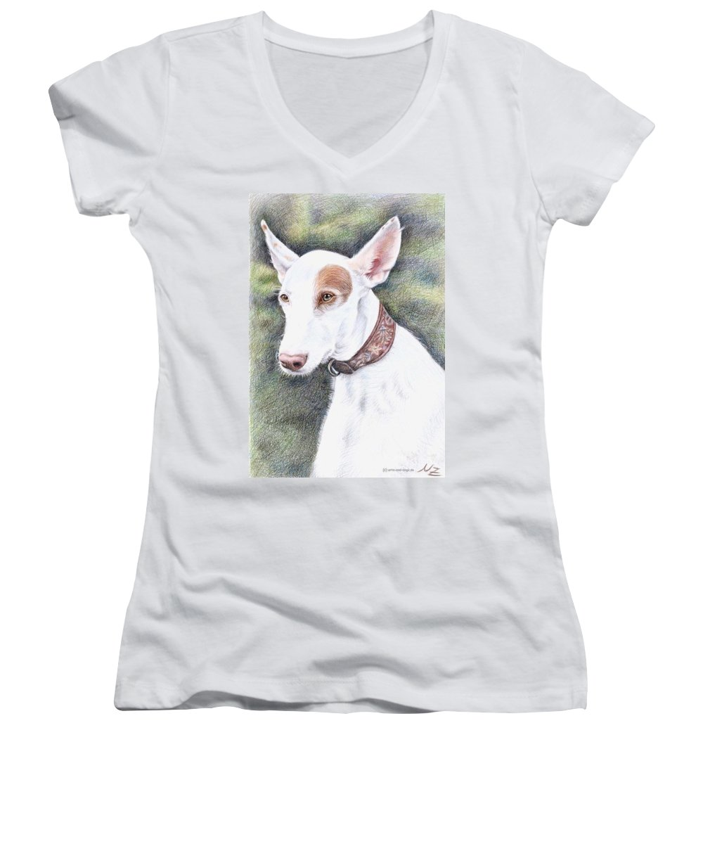 Dog Women's V-Neck T-Shirt featuring the drawing Podenco Ibicenco by Nicole Zeug