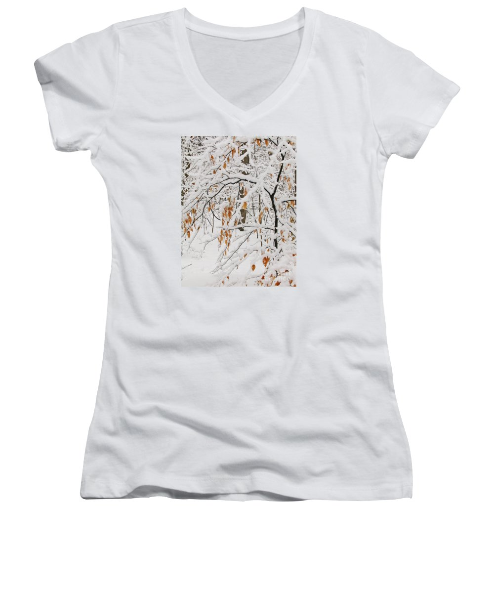 Winter Women's V-Neck (Athletic Fit) featuring the photograph Winter Branches by Ann Horn
