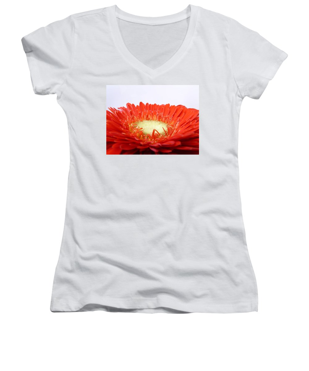 Gerbera Women's V-Neck (Athletic Fit) featuring the photograph Gerbera by Daniel Csoka
