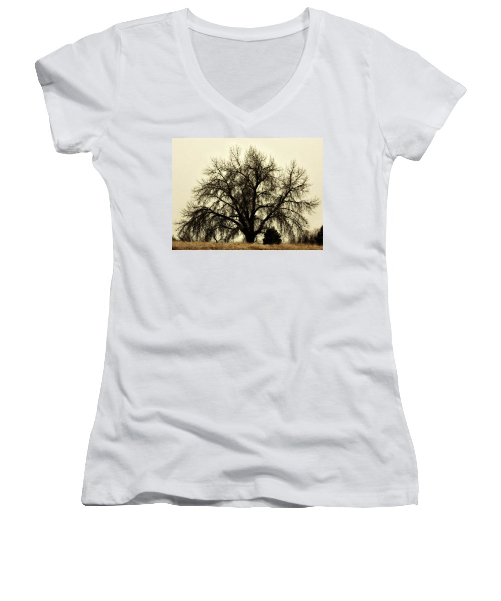 Tree Women's V-Neck T-Shirt featuring the photograph A Winter's Day by Marilyn Hunt