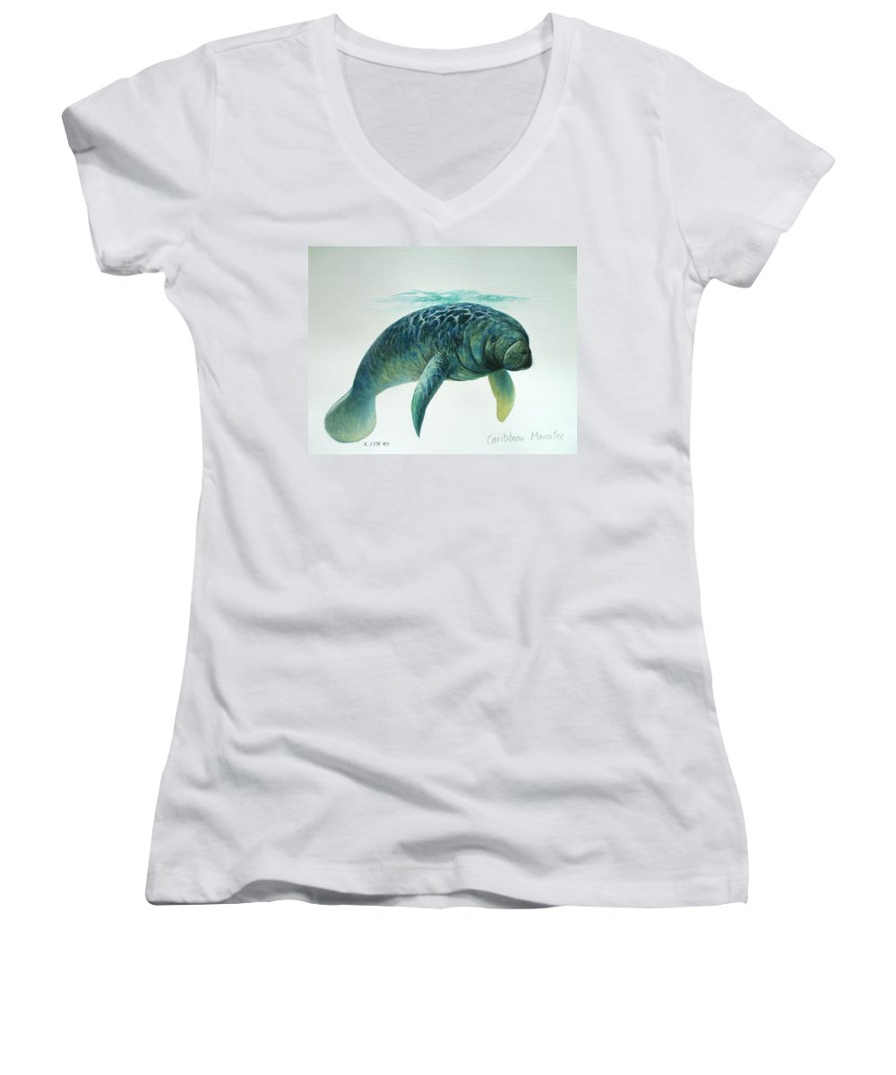 Manatee Women's V-Neck T-Shirt featuring the painting Caribbean Manatee by Christopher Cox