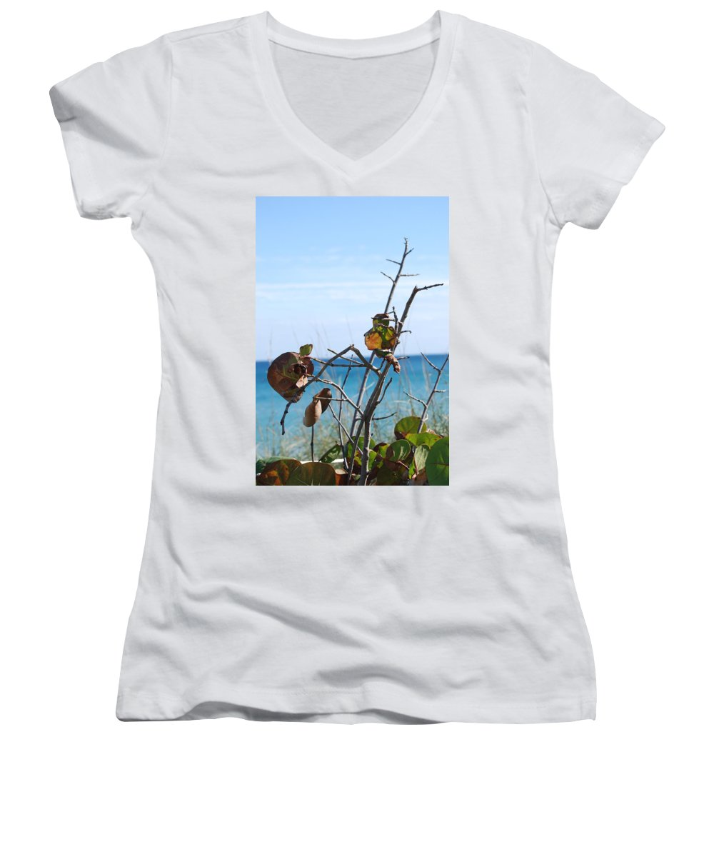 Ocean Women's V-Neck (Athletic Fit) featuring the photograph Dune Plants by Rob Hans