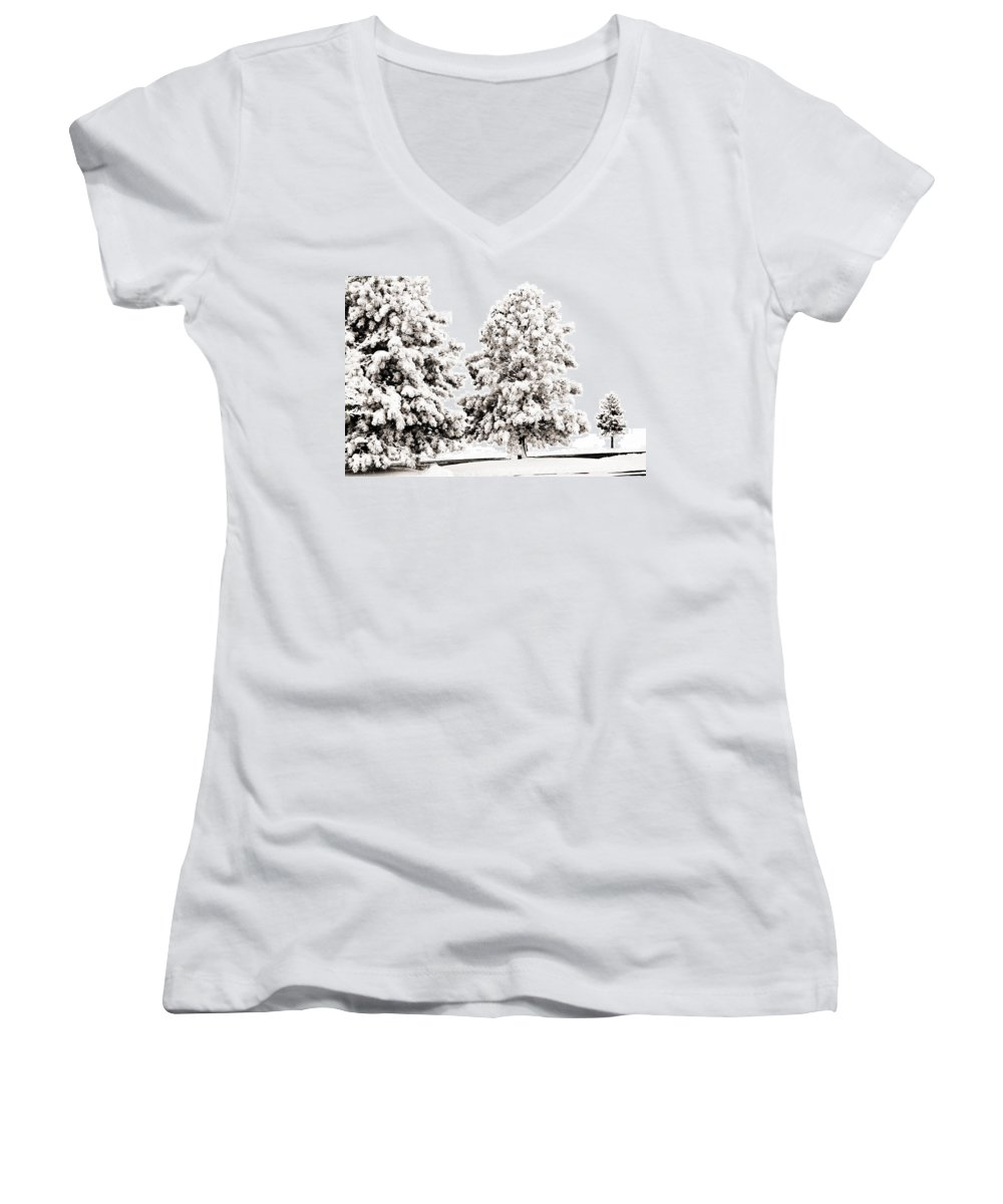 Trees Women's V-Neck T-Shirt featuring the photograph Family Of Trees by Marilyn Hunt