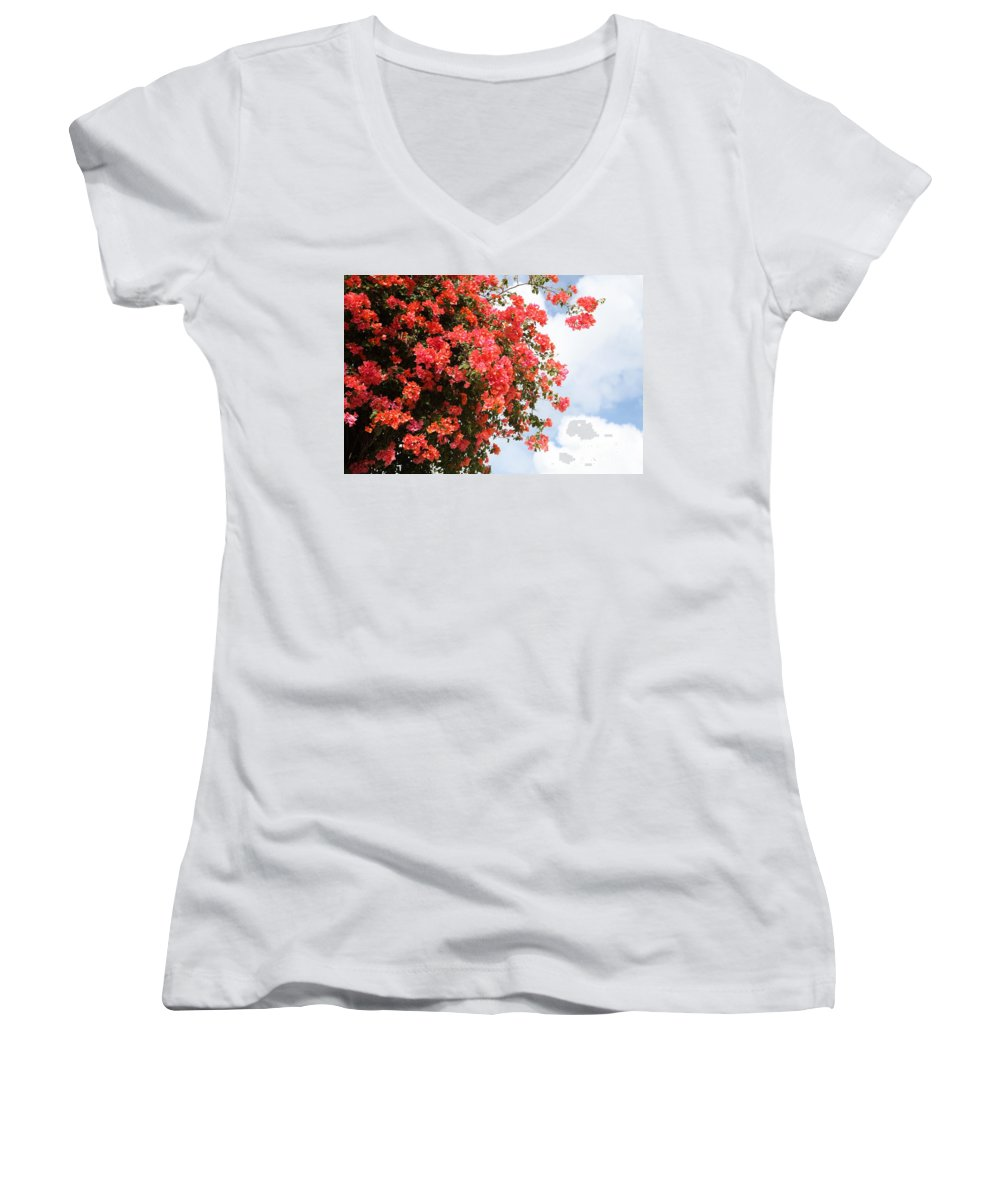 Hawaii Women's V-Neck (Athletic Fit) featuring the photograph Flowering Tree by Nadine Rippelmeyer