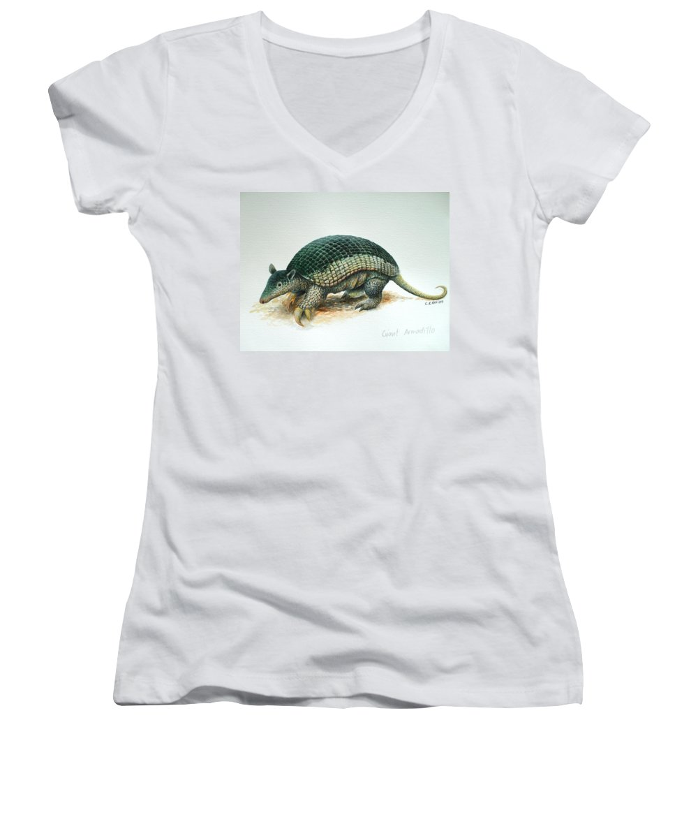 Giant Armadillo Women's V-Neck T-Shirt featuring the painting Giant Armadillo by Christopher Cox