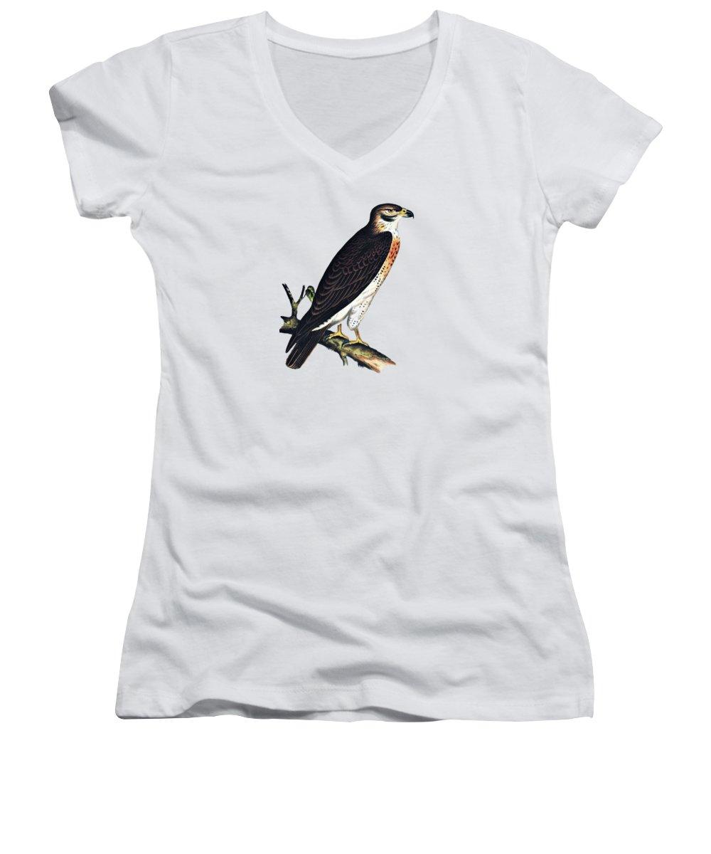 Grasshopper Junior V-Neck T-Shirts