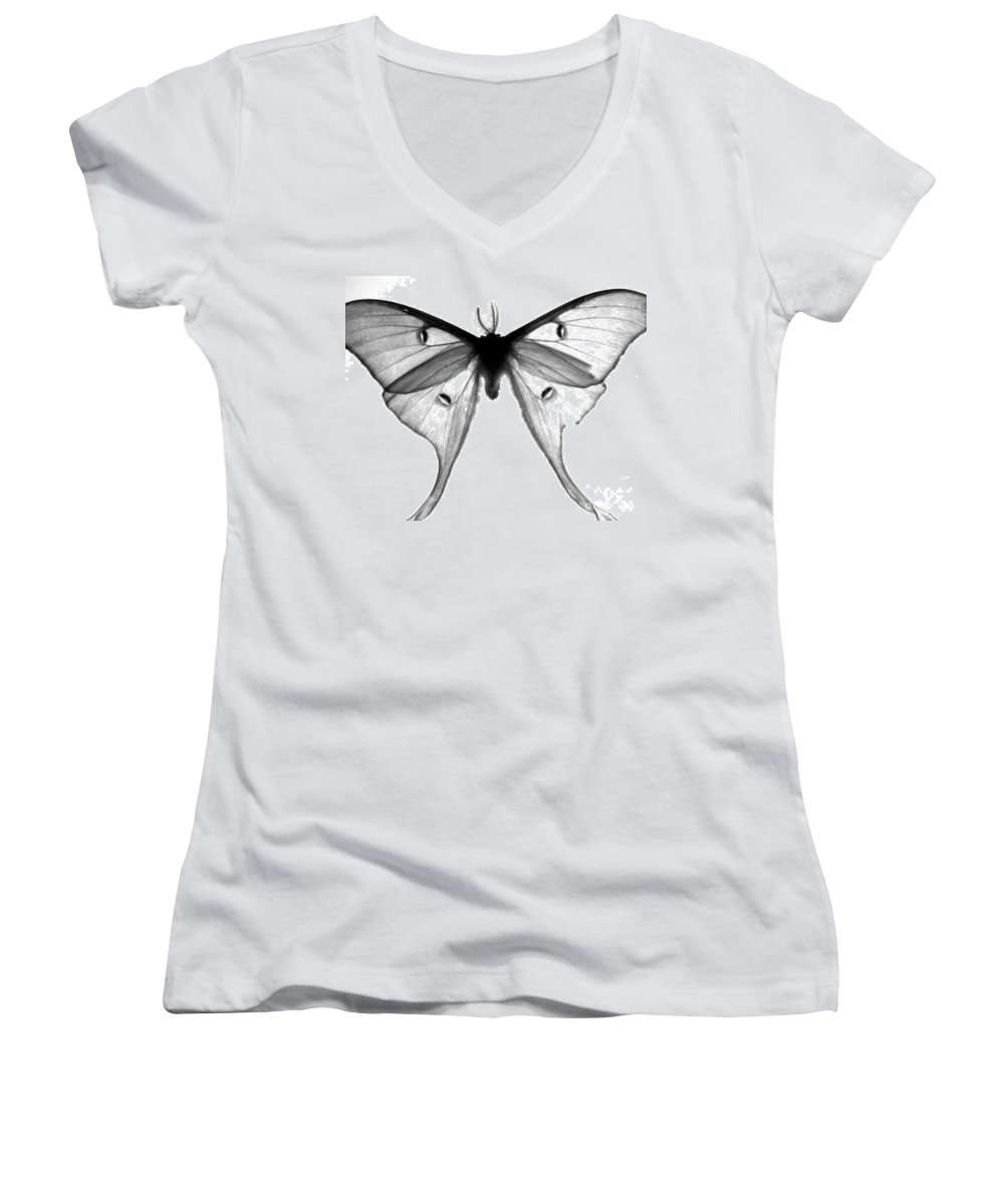 Moth Women's V-Neck T-Shirt featuring the photograph Moth by Amanda Barcon