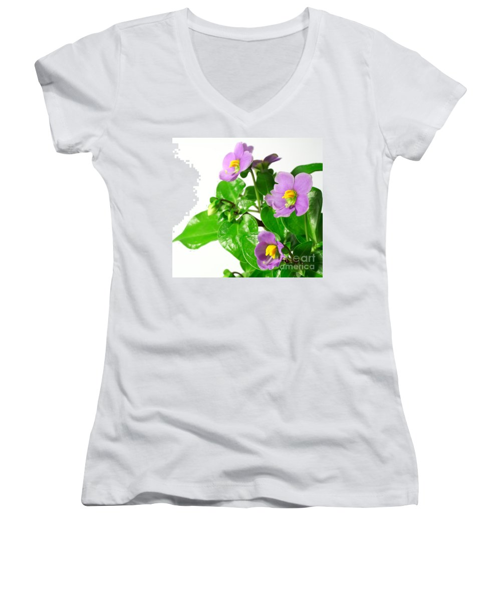 Closeup Women's V-Neck (Athletic Fit) featuring the photograph Persian Violets by Gaspar Avila