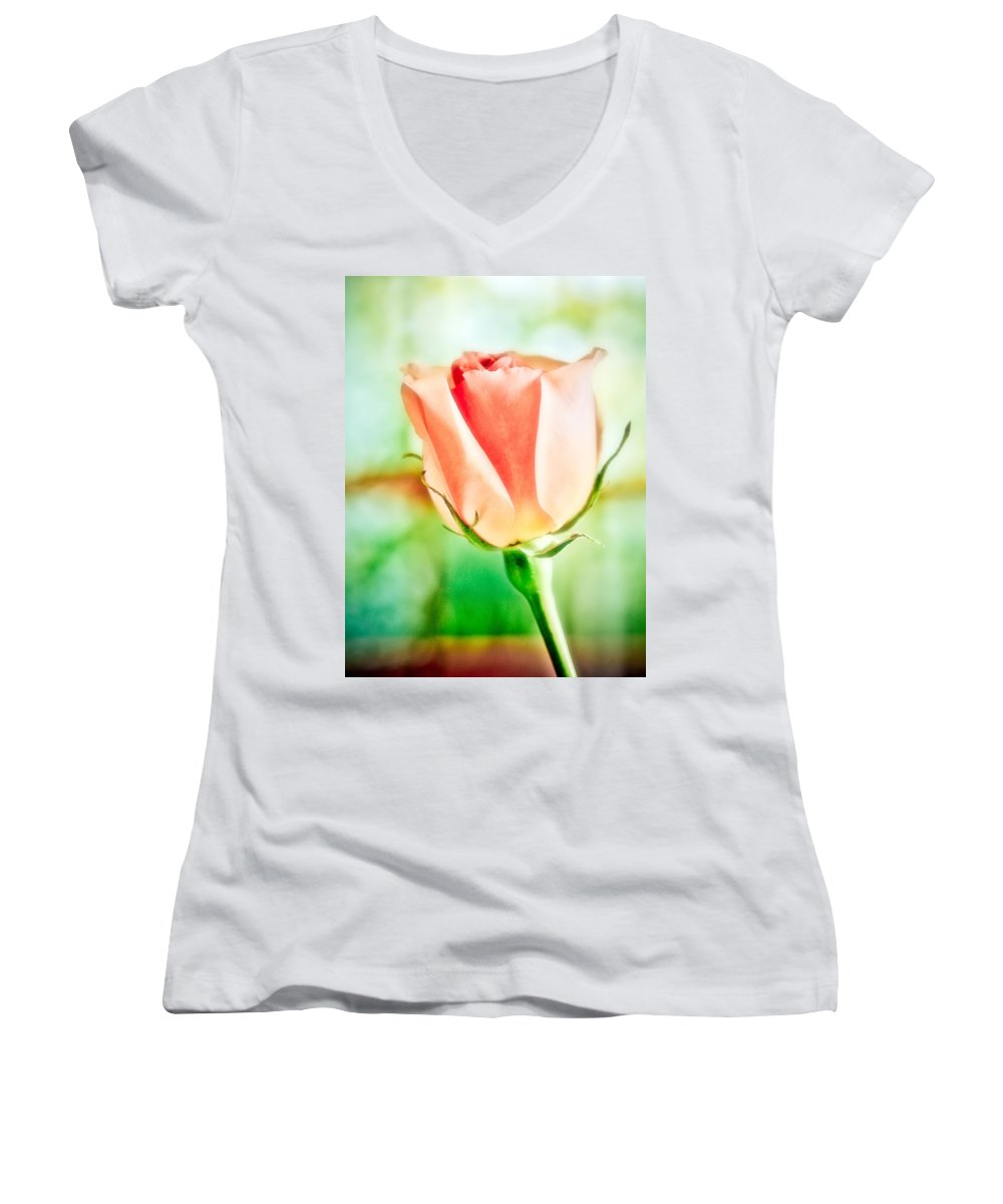 Rose Women's V-Neck T-Shirt featuring the photograph Rose In Window by Marilyn Hunt