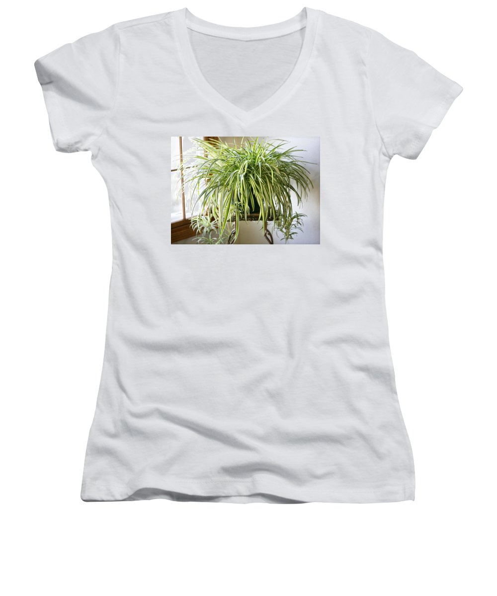 Spider Plant Women's V-Neck (Athletic Fit) featuring the photograph Spider Plant by Marilyn Hunt