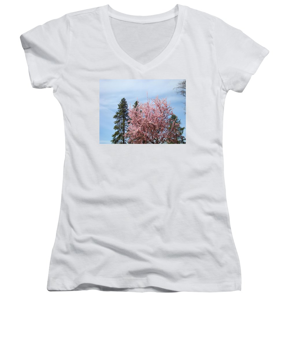 Trees Women's V-Neck T-Shirt featuring the photograph Spring Trees Bossoming Landscape Art Prints Pink Blossoms Clouds Sky by Baslee Troutman