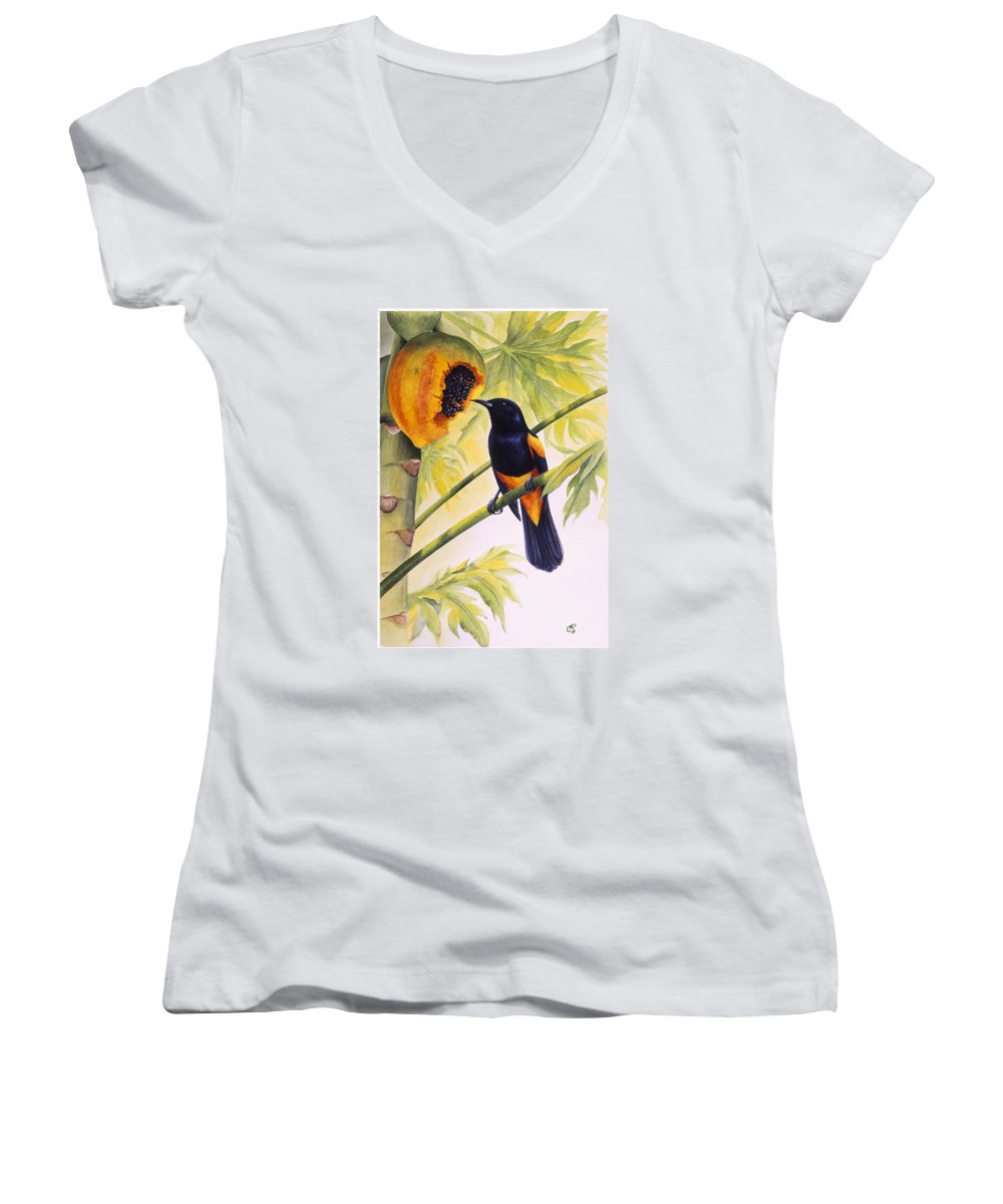 Chris Cox Women's V-Neck T-Shirt featuring the painting St. Lucia Oriole And Papaya by Christopher Cox