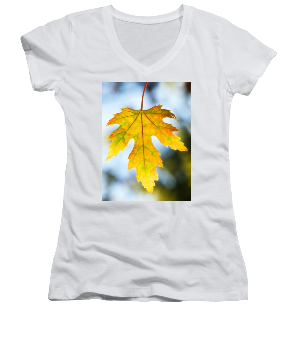 Maple Women's V-Neck T-Shirt featuring the photograph The Maple Leaf by Marilyn Hunt
