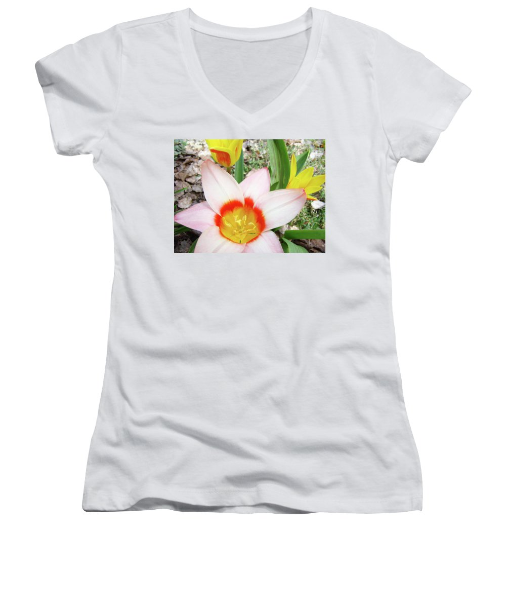 �tulips Artwork� Women's V-Neck T-Shirt featuring the photograph Tulips Artwork 9 Spring Floral Pink Tulip Flowers Art Prints by Baslee Troutman