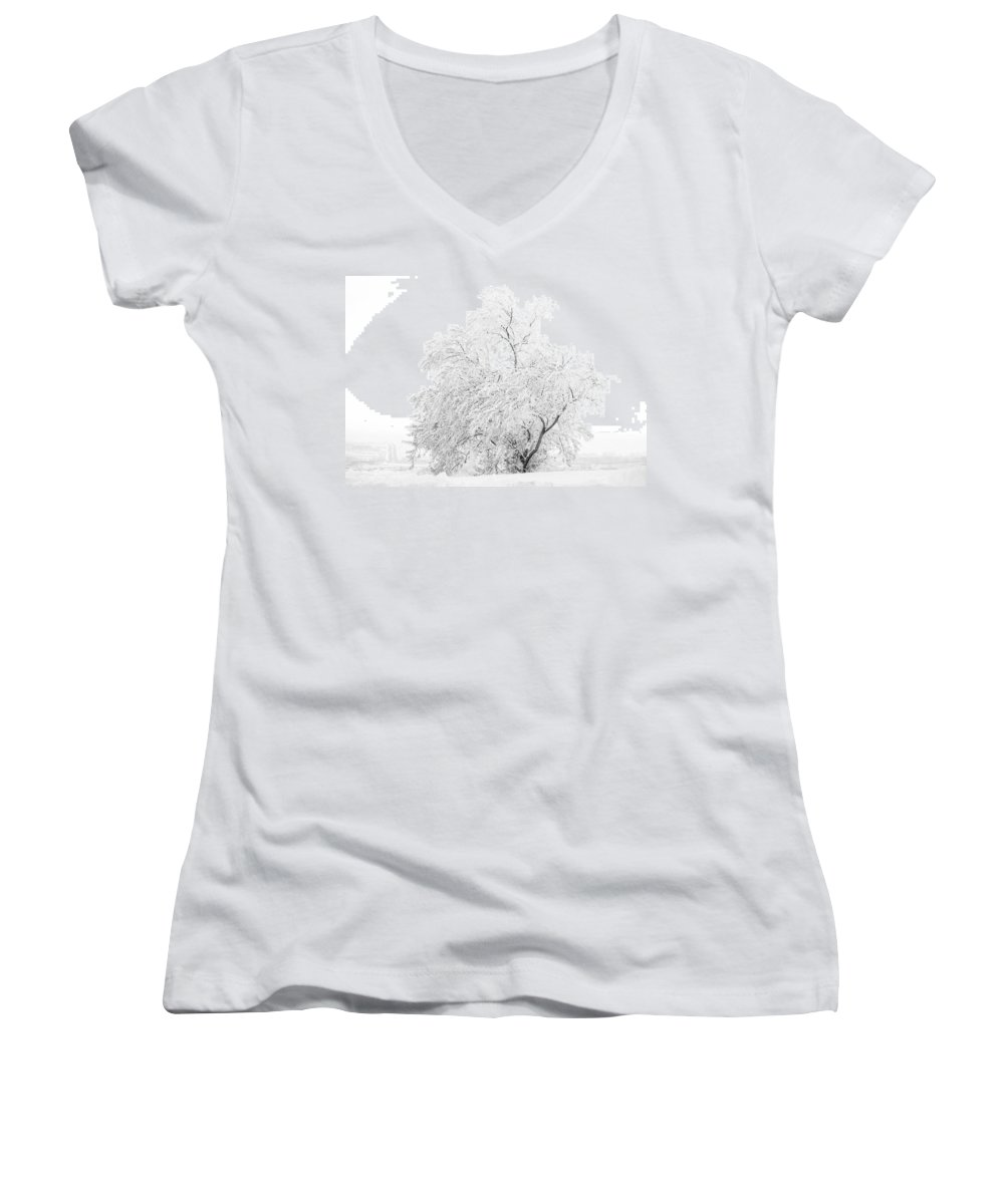 Snow Women's V-Neck T-Shirt featuring the photograph White On White by Marilyn Hunt