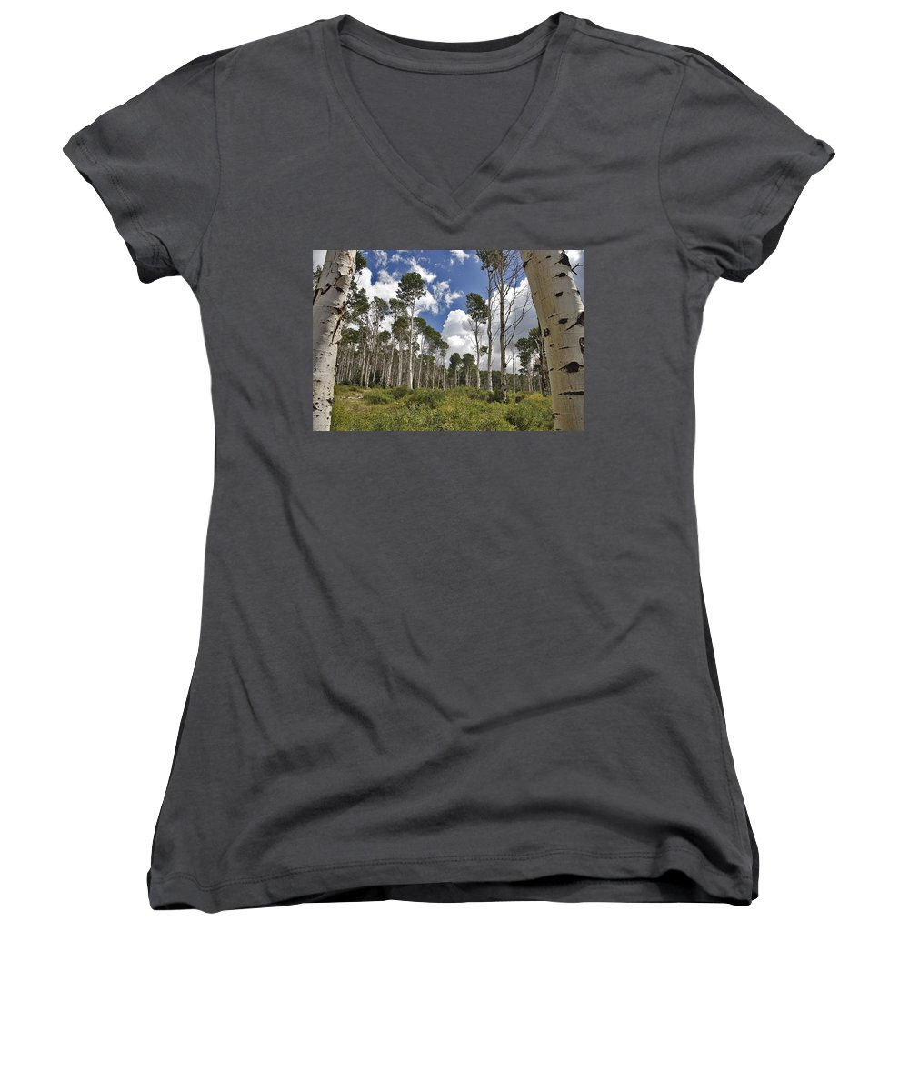 3scape Women's V-Neck T-Shirt featuring the photograph Aspen Grove by Adam Romanowicz
