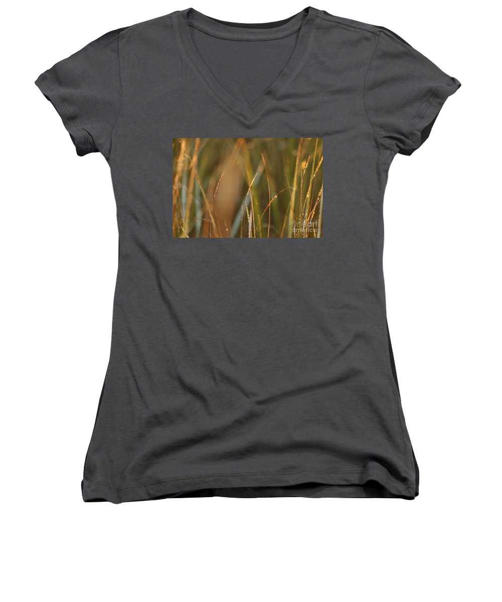 Dew Women's V-Neck (Athletic Fit) featuring the photograph Dewy Grasses by Nadine Rippelmeyer