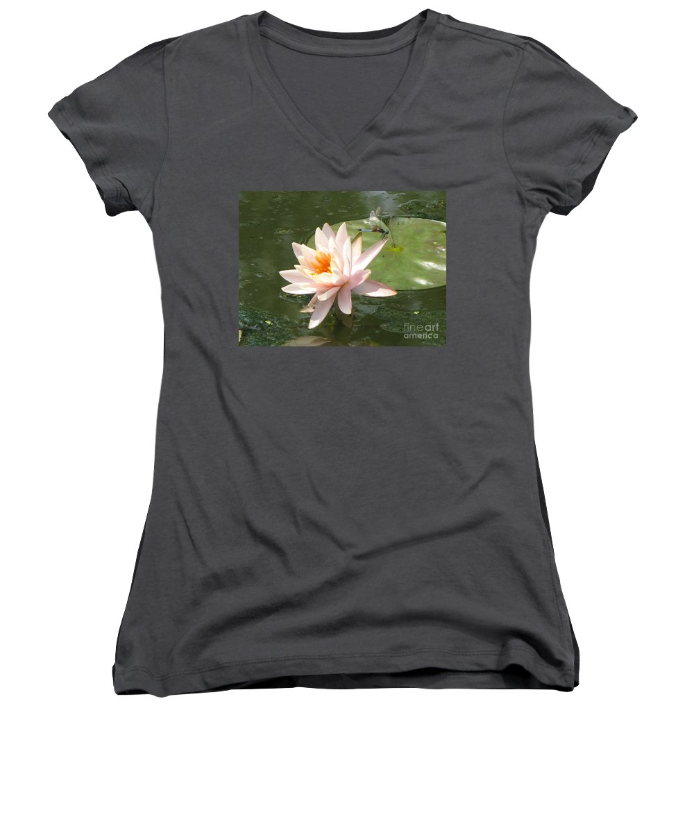 Dragon Fly Women's V-Neck T-Shirt featuring the photograph Dragonfly Landing by Amanda Barcon