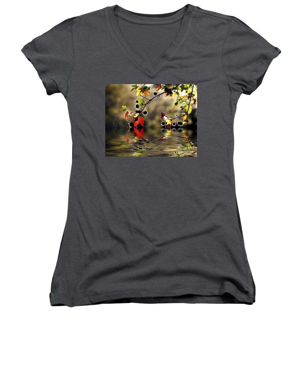 Liquidambar Maple Autumn Fall Flood Water Reflection Women's V-Neck T-Shirt featuring the photograph Liquidambar In Flood by Avalon Fine Art Photography