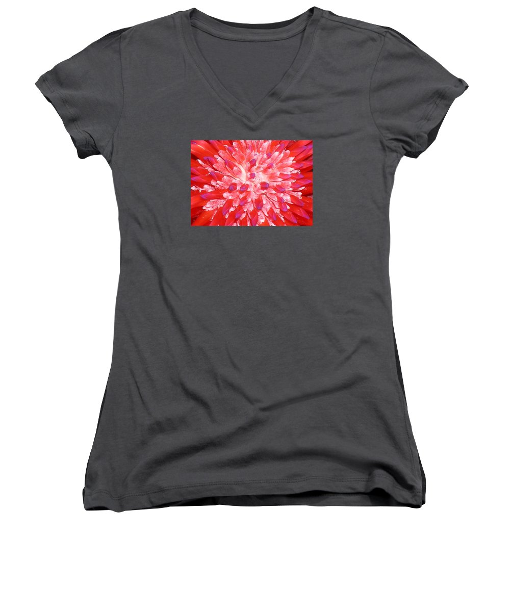 Hawaii Iphone Cases Women's V-Neck T-Shirt featuring the photograph Molokai Bromeliad by James Temple
