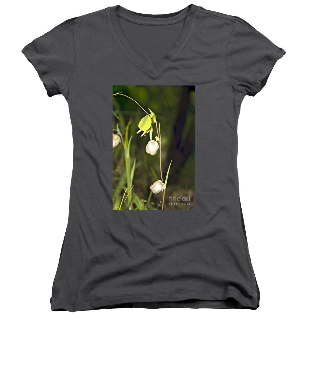 Wildflowers; Globes; Nature; Green; White Women's V-Neck T-Shirt featuring the photograph Whispers by Kathy McClure