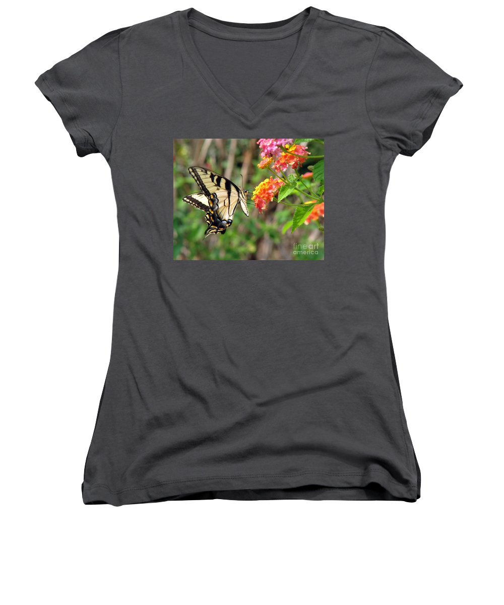 Butterfly Women's V-Neck T-Shirt featuring the photograph Butterfly by Amanda Barcon