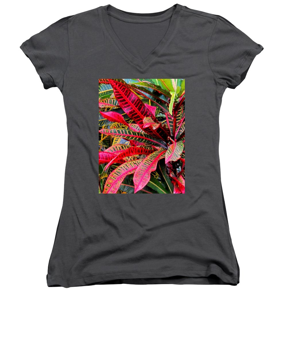 Red Women's V-Neck T-Shirt featuring the photograph A Rich Composition by Ian MacDonald