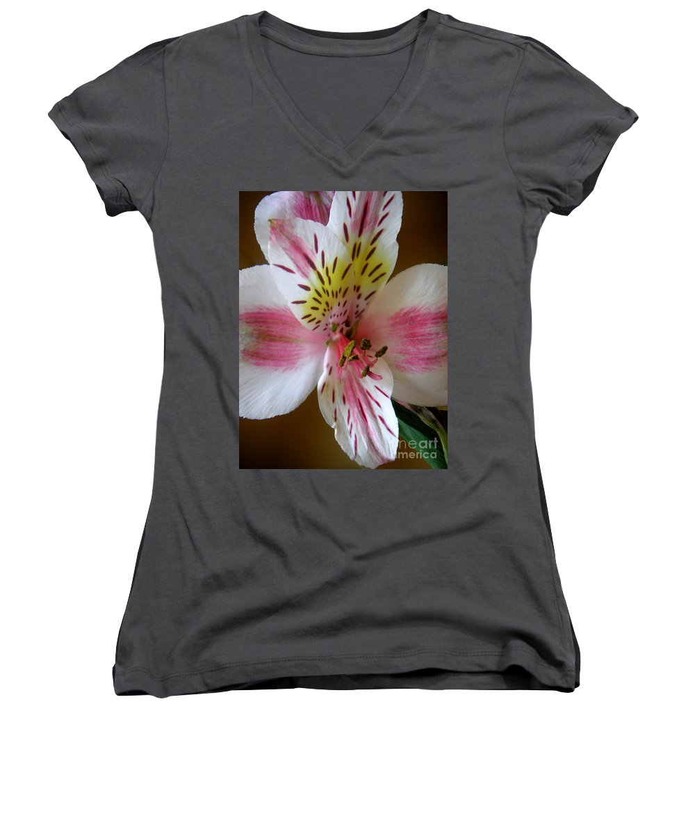 Nature Women's V-Neck T-Shirt featuring the photograph Alstroemerias - Close by Lucyna A M Green