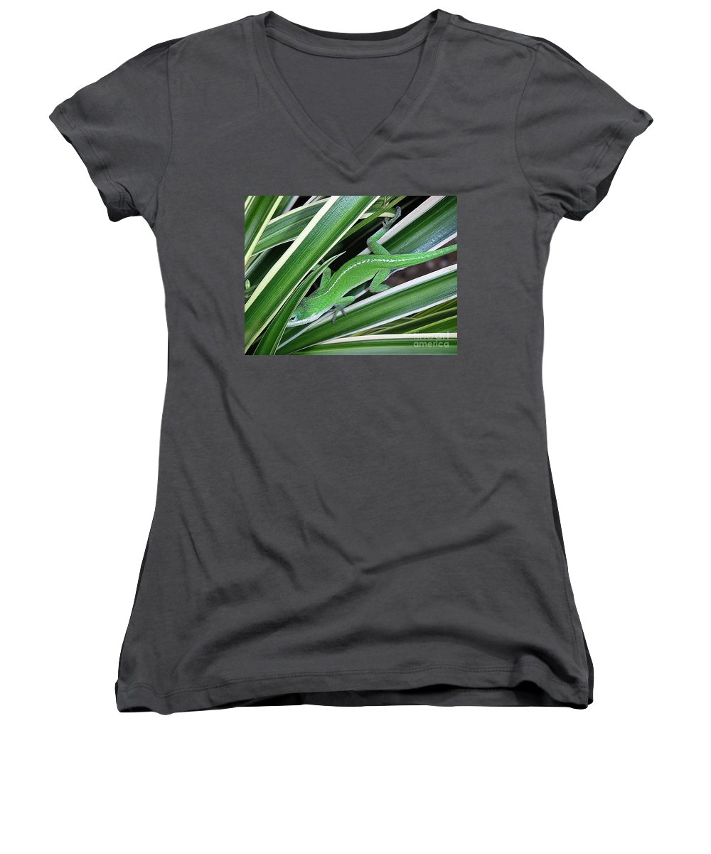 Nature Women's V-Neck T-Shirt featuring the photograph Anole Hiding In Spider Plant by Lucyna A M Green