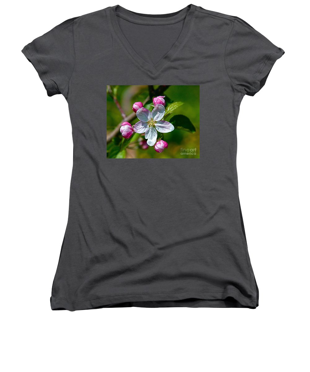 Flower Women's V-Neck (Athletic Fit) featuring the photograph Apple Blossom by Robert Pearson