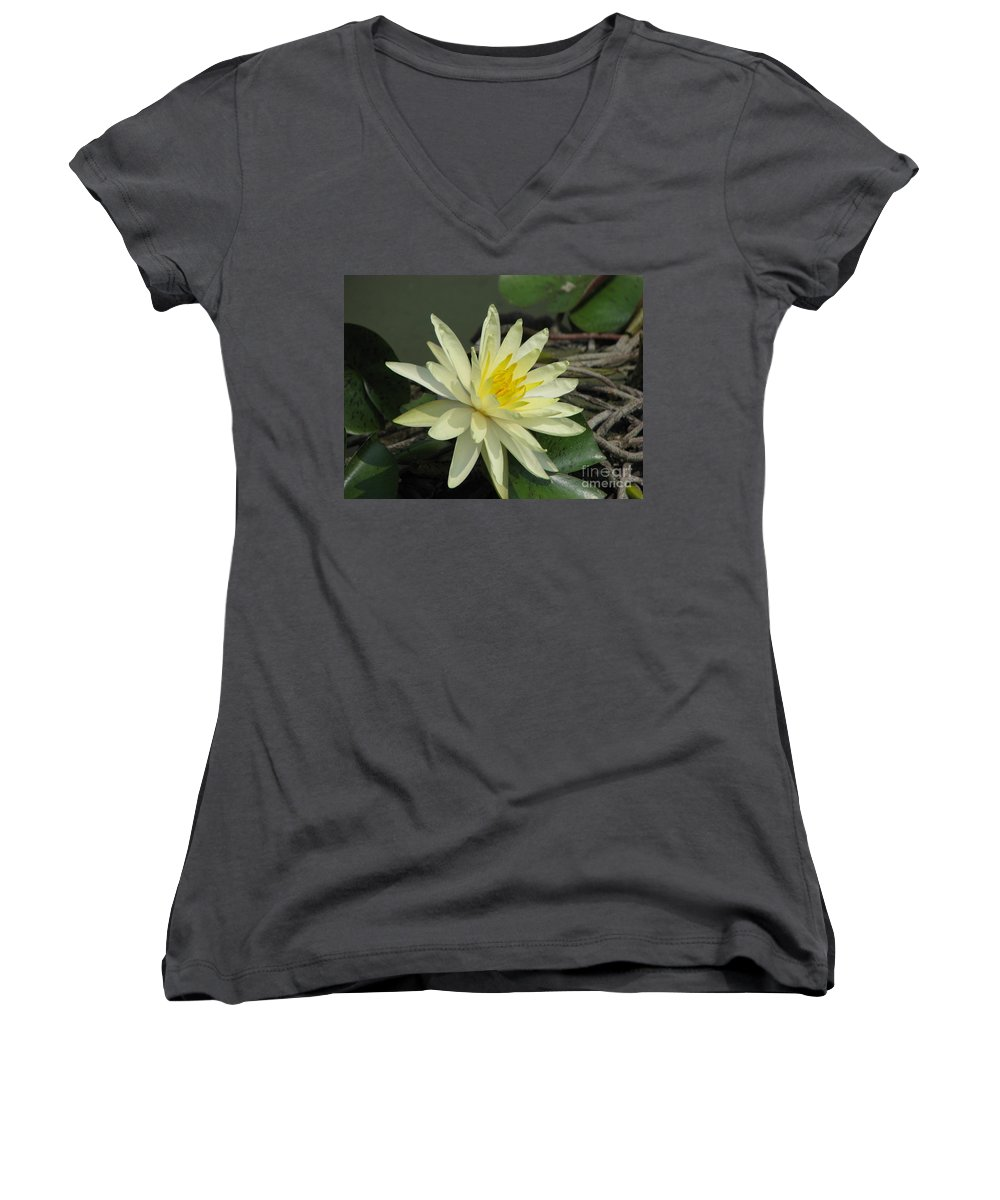 Lilly Women's V-Neck (Athletic Fit) featuring the photograph At The Pond by Amanda Barcon