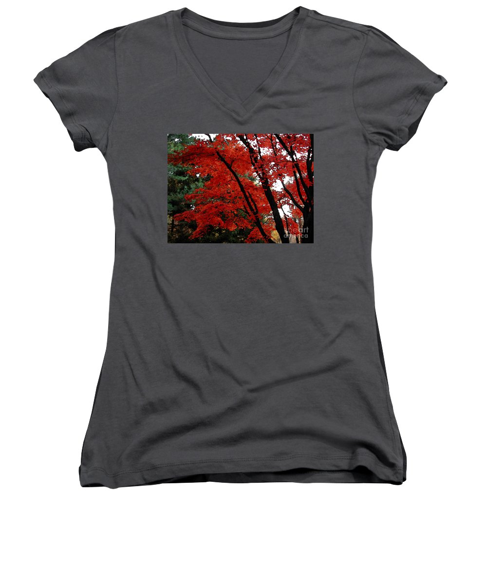 Autumn Women's V-Neck T-Shirt featuring the photograph Autumn In New England by Melissa A Benson