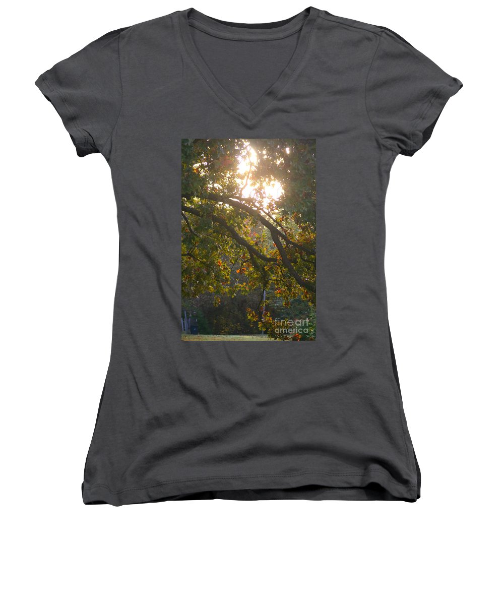 Autumn Women's V-Neck T-Shirt featuring the photograph Autumn Morning Glow by Nadine Rippelmeyer