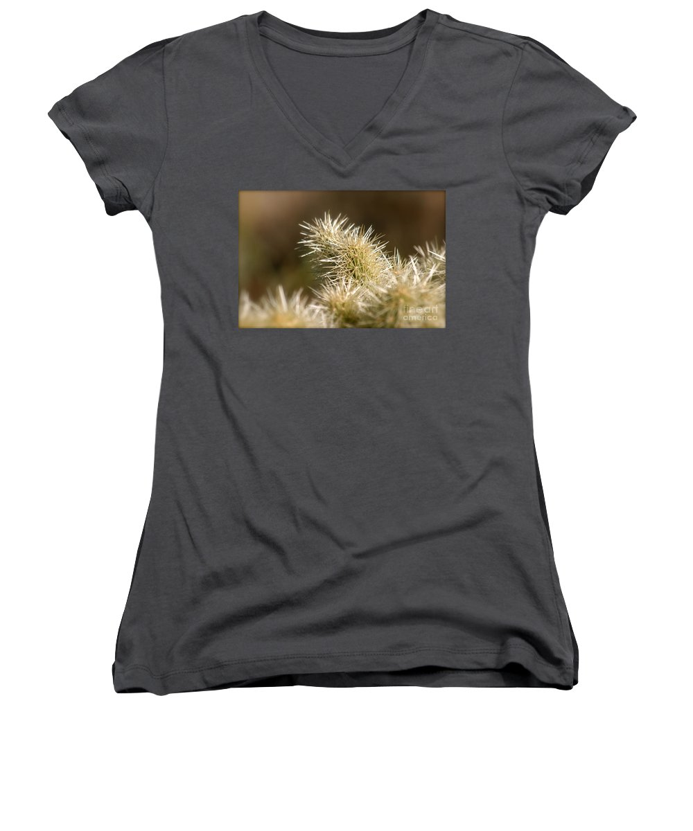 Cactus Women's V-Neck T-Shirt featuring the photograph Cacti by Nadine Rippelmeyer