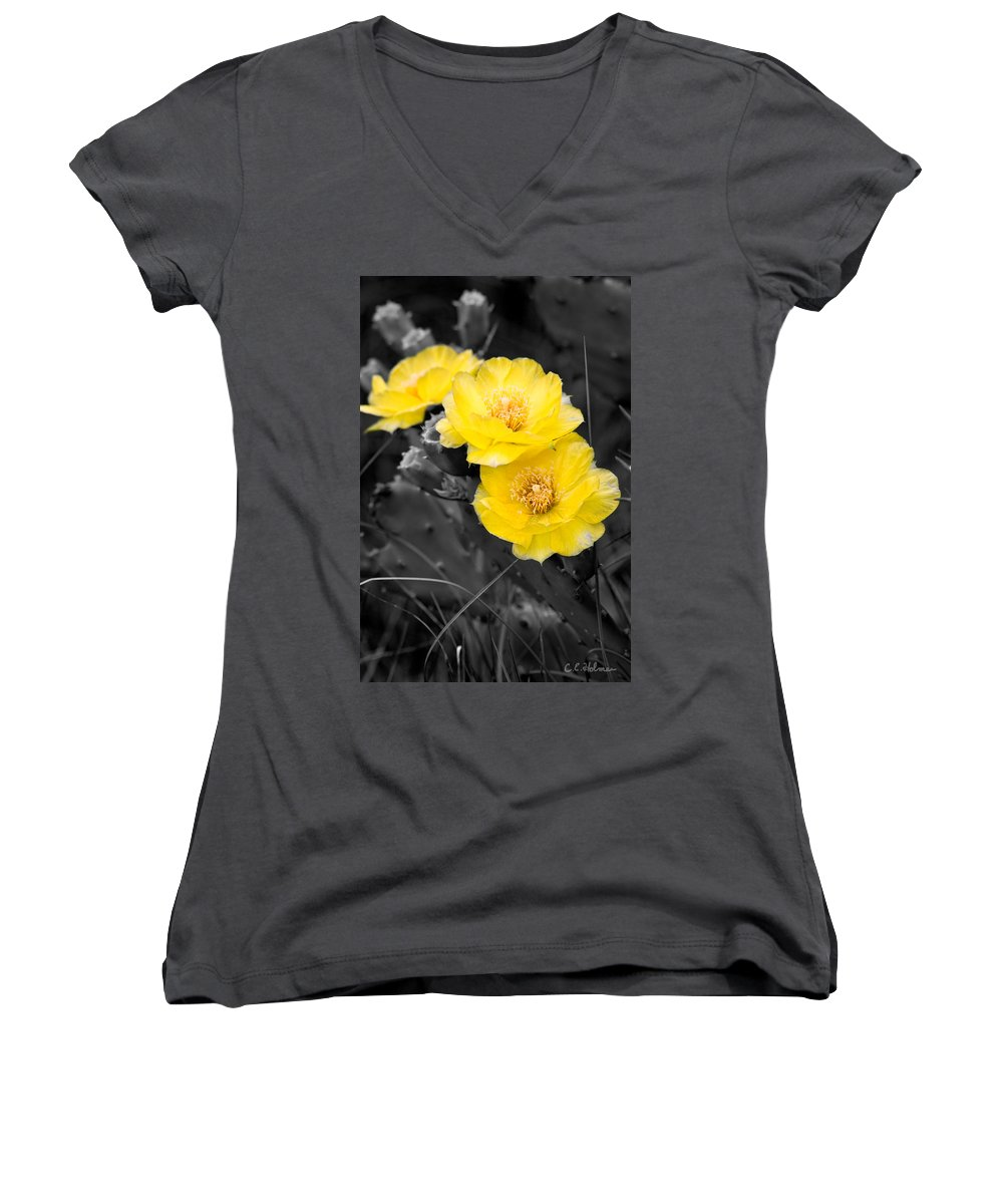 Cactus Women's V-Neck T-Shirt featuring the photograph Cactus Blossom by Christopher Holmes