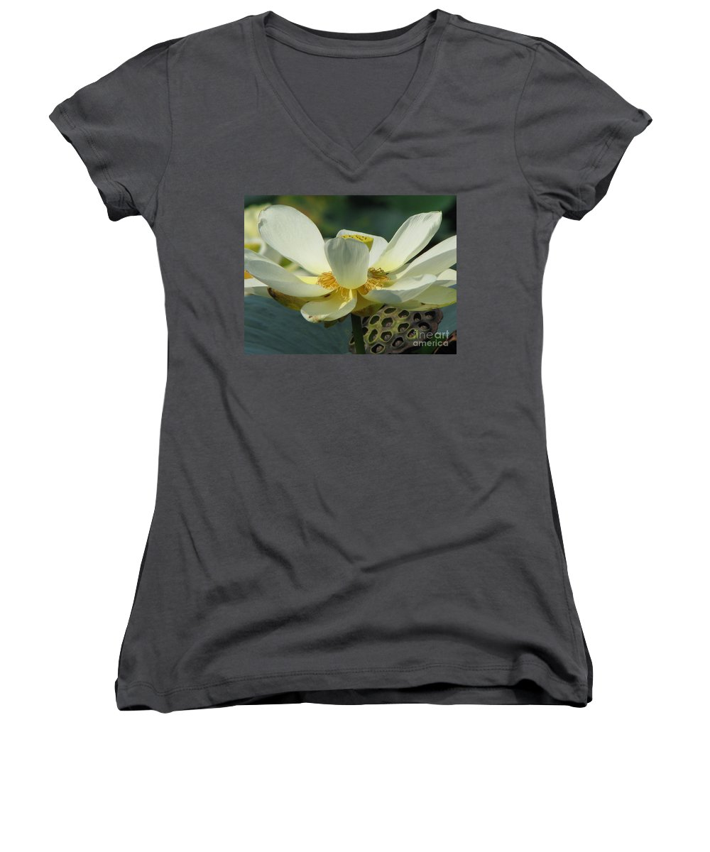 Lotus Women's V-Neck (Athletic Fit) featuring the photograph Calm by Amanda Barcon