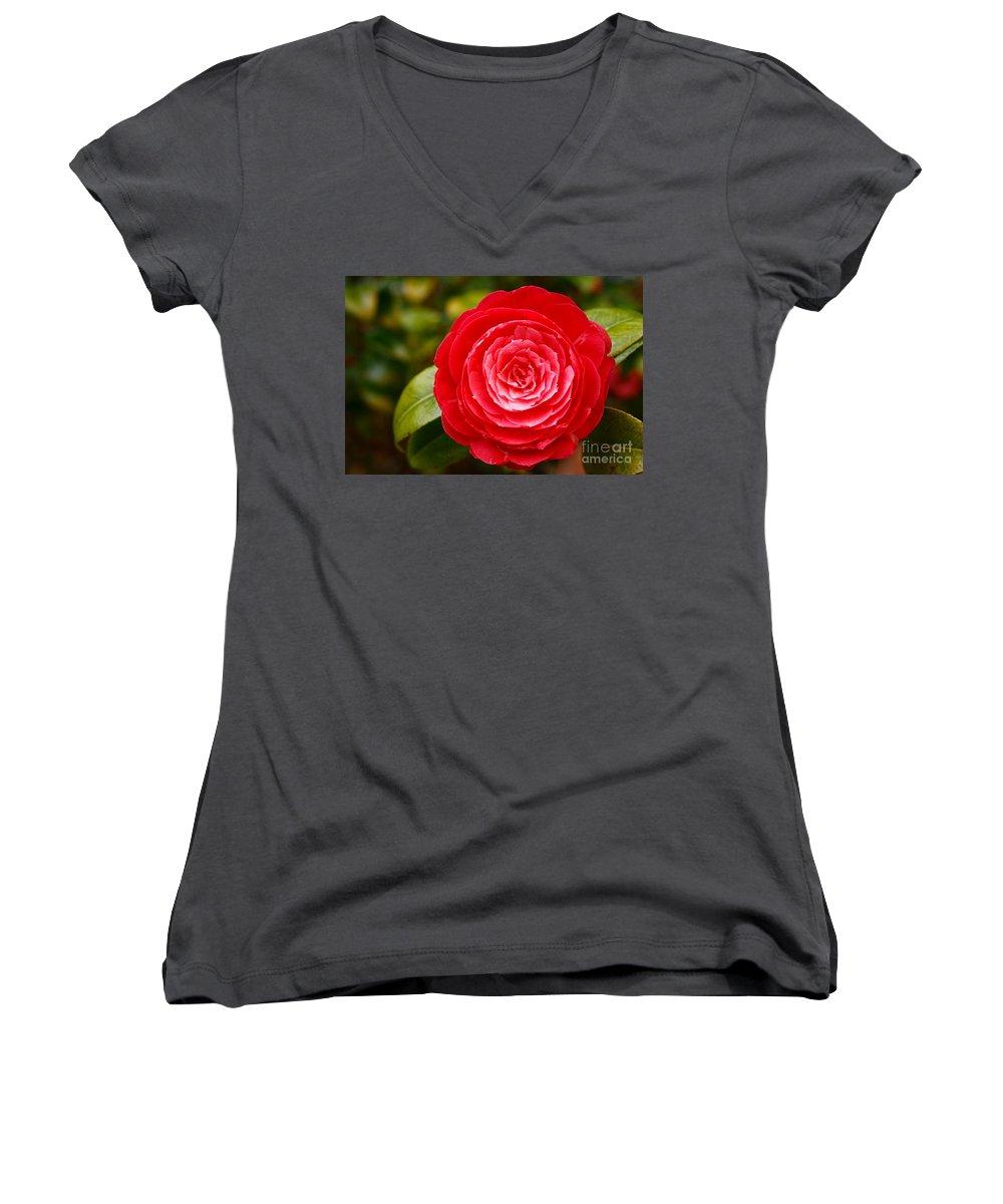 Azores Women's V-Neck T-Shirt featuring the photograph Camellia Japonica by Gaspar Avila