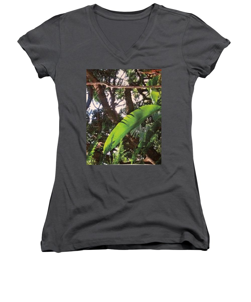 Caribbean Women's V-Neck T-Shirt featuring the photograph Caribbean Banana Leaf by Ian MacDonald