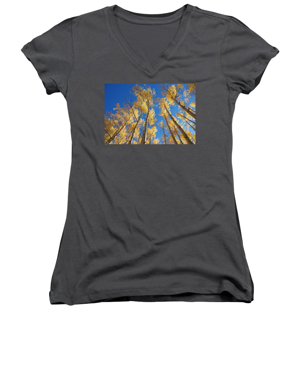 Aspen Women's V-Neck (Athletic Fit) featuring the photograph Colorado Aspen by Jerry McElroy