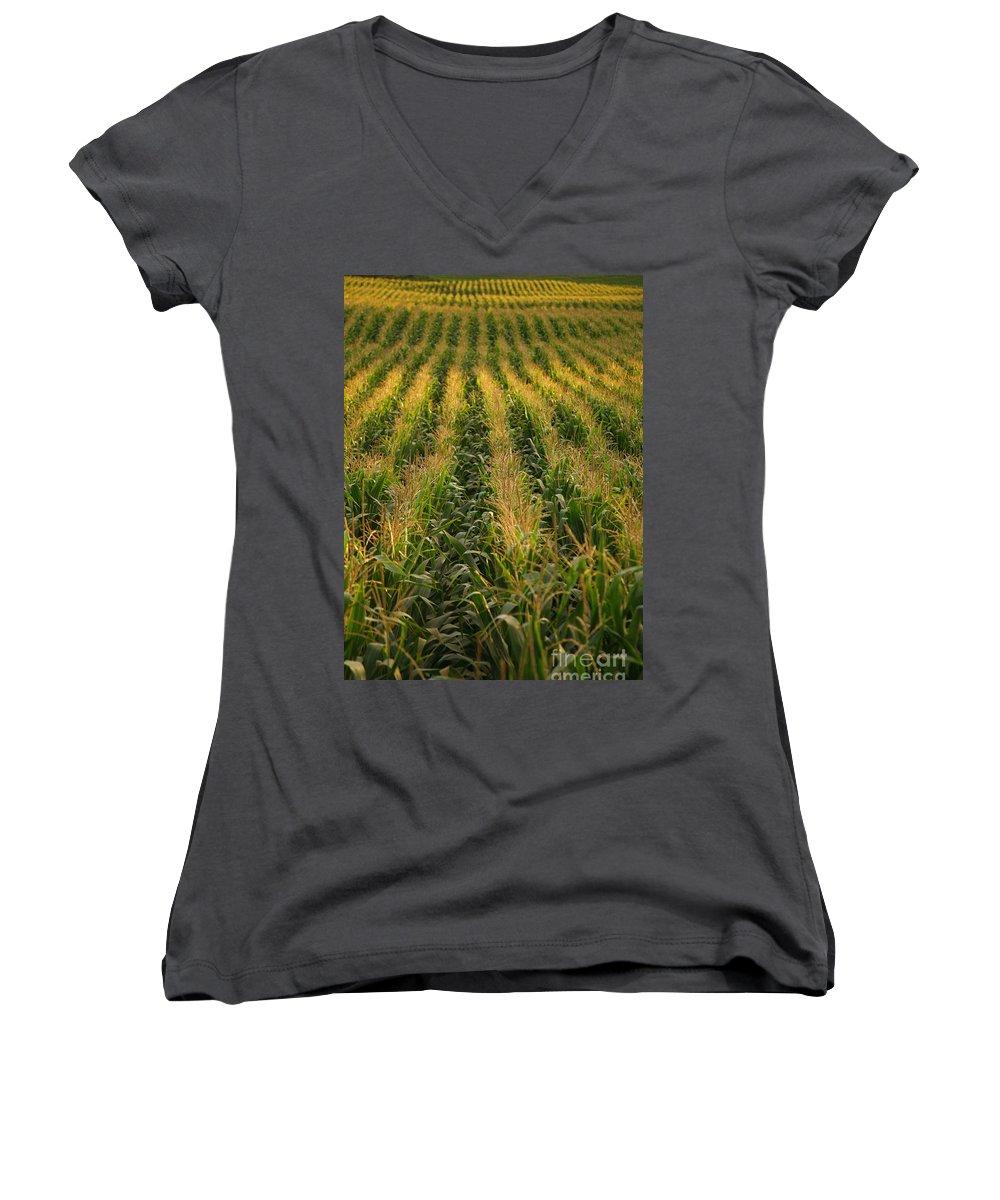 Acores Women's V-Neck T-Shirt featuring the photograph Corn Field by Gaspar Avila
