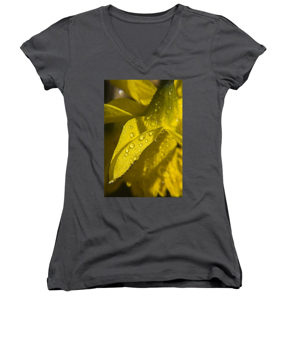 Daffodil Women's V-Neck T-Shirt featuring the photograph Daffodil Dew by Teresa Mucha